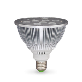 Bombillas LED PAR38
